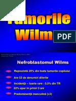 CURS Tumorile Wilms