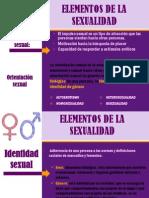 Elementos de La Sexualidad