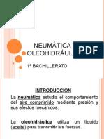Neu_ole_presentación