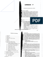 Texto Una- Auditoria I- 691- Unidad 7