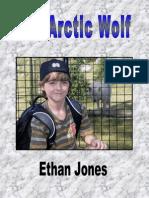 Ethan Wolf1