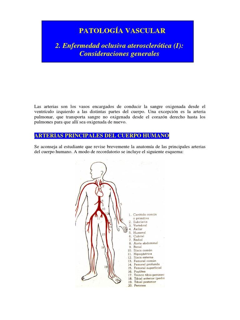 CONTENIDO 11 (1)