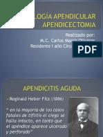 Apendicitis Aguda Apendicectomia_2