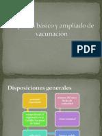 Esquema básico y ampliado de vacunación