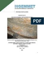 A6480 Informe Tecnico POI_ GE13 2009_Metalogenia Cordillera Oriental Norte y Sur Del Peru_M Valencia[1]