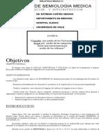 Manual de semiología (Biblioteca Medica 21)