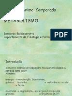 Metabolismo I