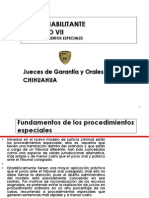 7 Los Procedimientos Especiales[1]Oralidadbcoynegro