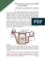 BIODIGESTOR - PLANTAS BIORESIDUALES