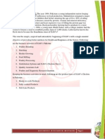 K&NS analysis of company  financial and analytically , and statistical