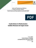 CBM IMSS.pdf