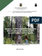 Estudio Para Carbon Vegetacion