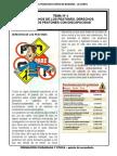 Tema 5 Derechos de Los Peatones Civica 5 Secundaria