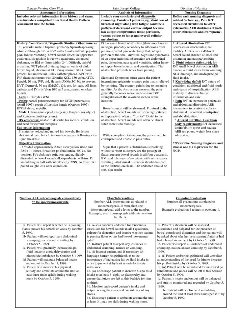 Sample Nursing Care Plan | Vomiting