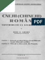 Arion Cnejii