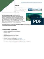 Fiche descriptive - Société Offshore au Bélize (ICO Services)