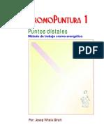 Cromopuntura