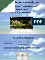 A. ARTICULAR 1.pptx