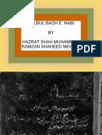 BULBUL BAGH E NABI      by HAZRAT SHAH MUHAMMAD RAMZAN MEHAMI