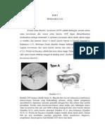 Fistula Sinus Carotis
