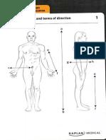 113264016 Anatomia Omului