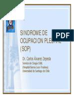 Sindrome de Ocupacion Pleural 2006