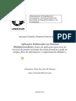 Corrigido RelatorioFinalAlexandre (1)