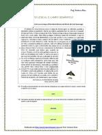 func.lingua - campo lexical e campo semântico (blog12 12-13)