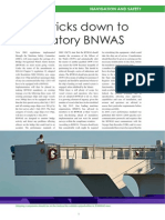 Bnwas Review