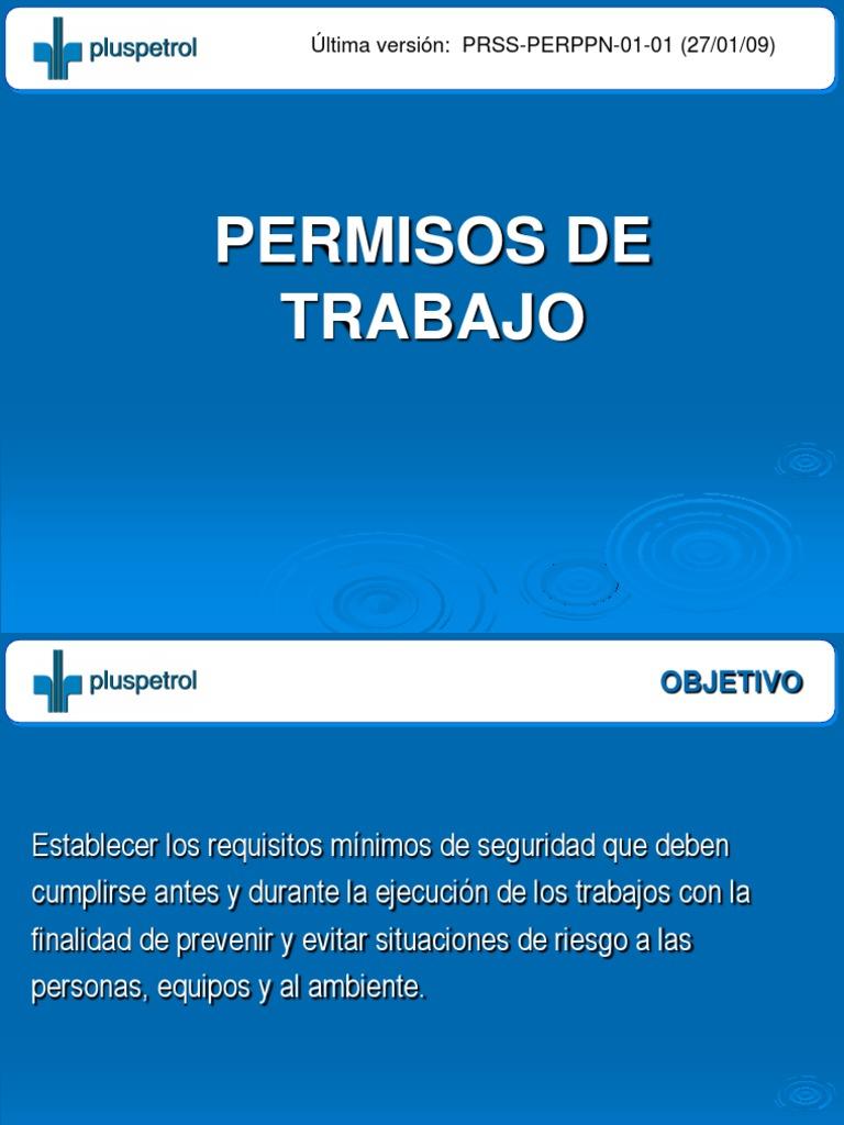 Permisos de Trabajo( Prss Perppn 01 01)