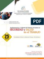 ImplementacionAuditoriaSGSST2014