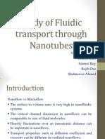 Fluidic Transport Through Carbon Nanotubes