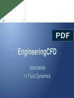 EngCFDPresentationAug09.PDF