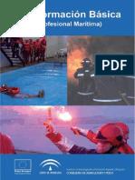 Formacion basica.pdf