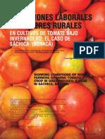Condiciones laborales de mujeres rurales en cultivos de tomate bajo invernadero; el caso de Sáchica (Boyacá)