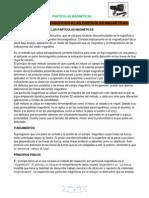 PARTICULAS MAGNETIZABLES (Autoguardado)