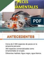 1peces Ornamentales II