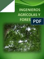 Ingenieros Agrícolas y Forestales