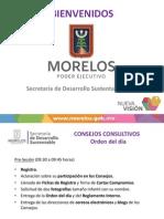 Presentación Consejos Consultivos, 13.06.21