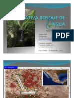 Presentacion Bosque de Agua 20/09/13