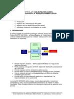 Manejo Del Cambio Organizacional