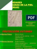 Enfermedades Bacterianas de La Piel Piodermias 1232954567968867 1