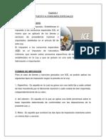 Capítulo I CE