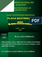 Diapositivas Plca 1