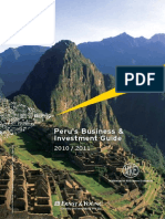 E&Y Peru White Paper