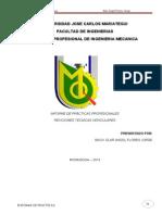 Informe de Practicas Profesionales1