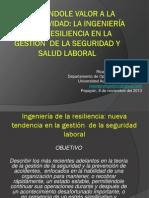 Ing Resilencia Seminario Impartido en Popayan 2013