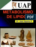 Metabolismo de Lipidos-Alas 2013 PDF
