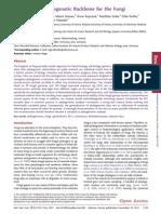 2012_Ebersberger Et Al_A Consistent Phylogenetic Backbone for the Fungi