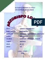 aaa-ANEMIA FERROPÉNICA-monográfico macro microscopía